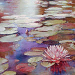 Water-lily 02