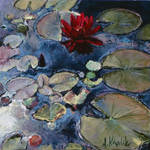Water Lily 06