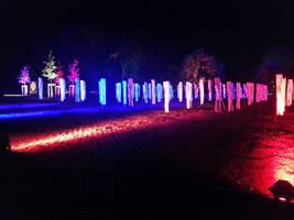 Herbstleuchten-Autumm lights 2015