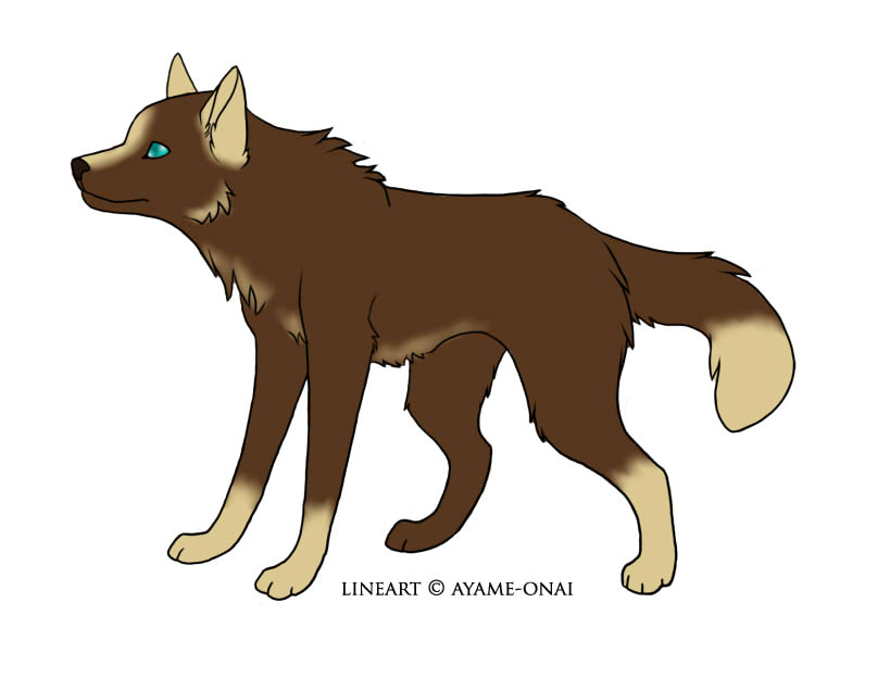 Red wolf pup drawing