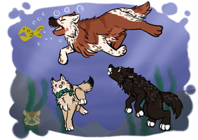 Fish Chase by Otackoon