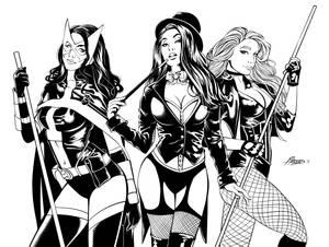 Huntress, Zatanna, Canary