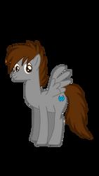 A new pony is born (Pony Pascal/MLP OC) by BlackKyurem14