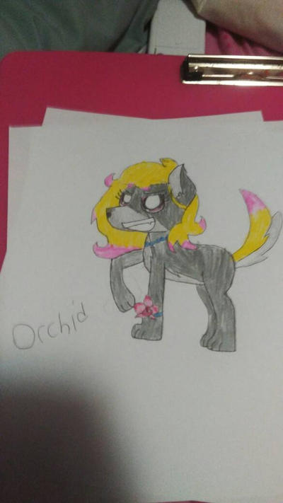 Orchid by Enderpony626