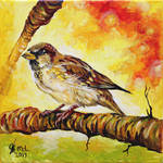 Common sparrow -SOLD