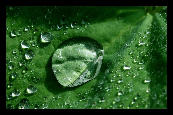 Crystal Drop by Loiissipoff