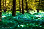 Forest waves