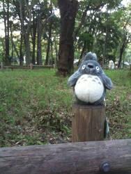 Totoro no Mori by seitensei
