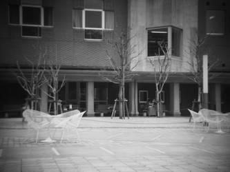 Still Day by seitensei
