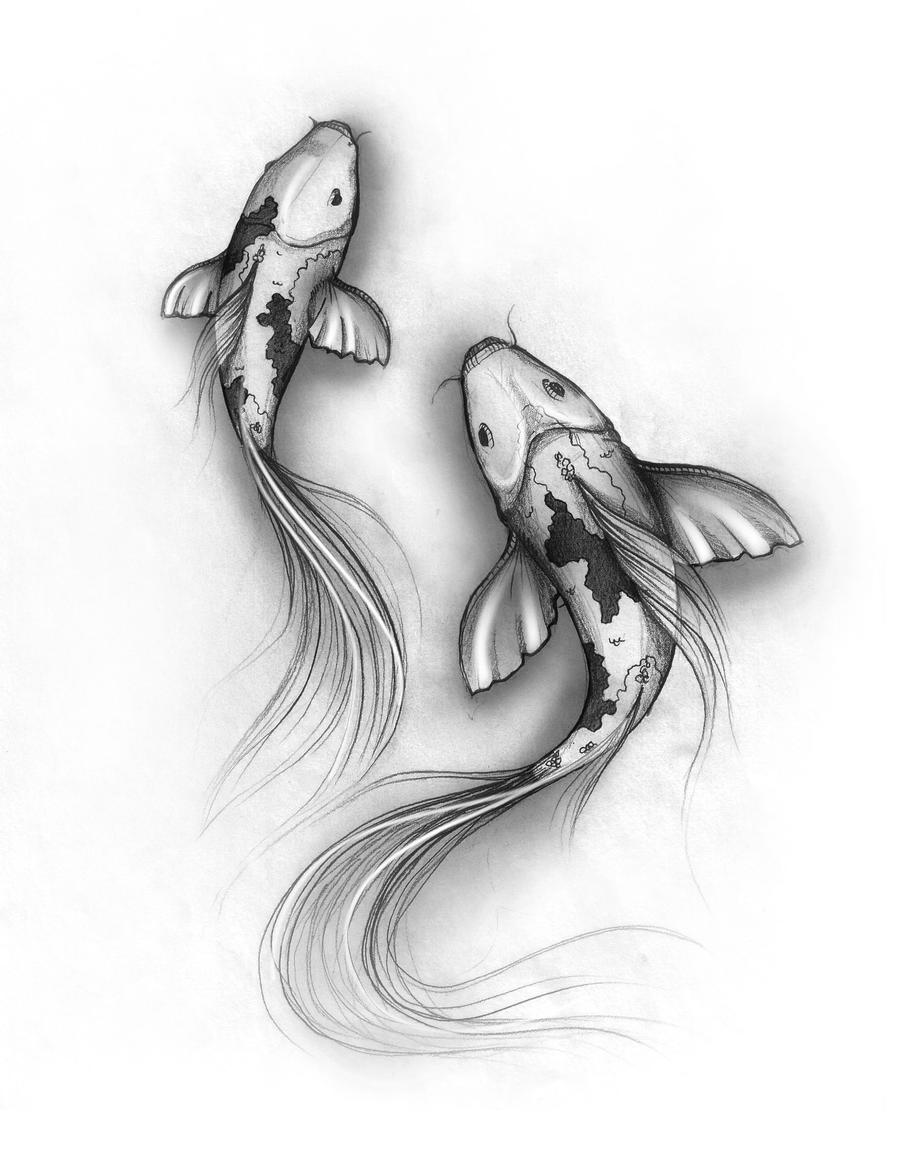 Koi Fish Sketch Of Koi Fish Sketch By Denxio On Deviantart