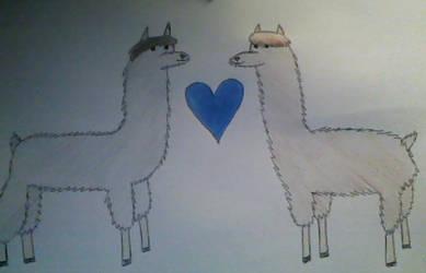 Smoshy Llamas! by MsBaconator