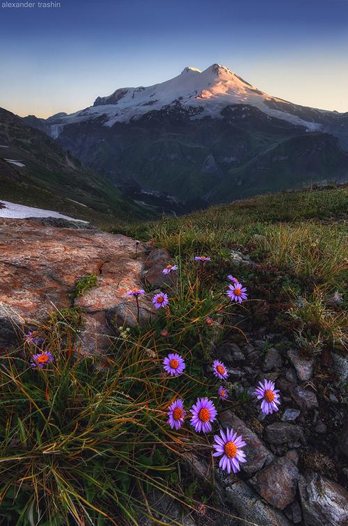 Alpine Paint by Trashins