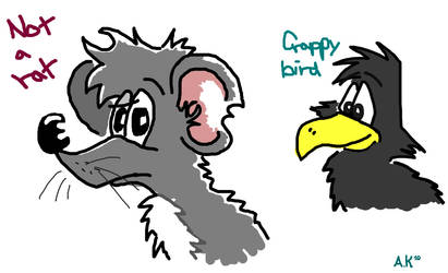 Not a rat and crappy bird