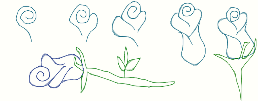 How to draw simple rose by crochetamommy on deviantart for How do you draw a rose step by step