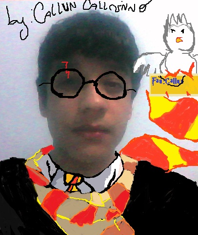 Harry Potter fan by CallunCallvinno