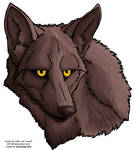 Coyote Face Free Lineart