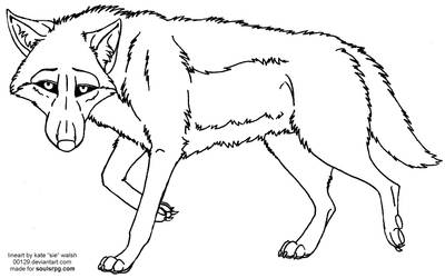 Free Wolf Staring Lineart