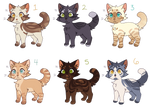 Mini adopts (5/6) Open! PRICES LOWERED! by scooptroopadopts