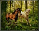 Unicorn Dance by Cynnalia