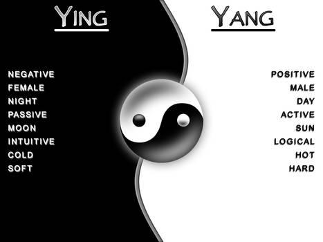 Ying Yang - Duality