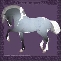 Winter Import 733 by Psynthesis