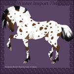 Winter Import 734