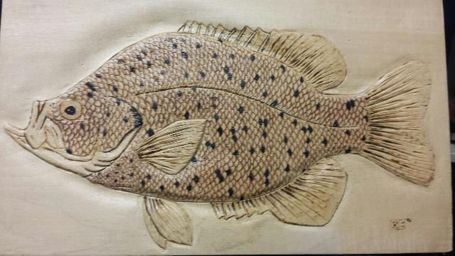 Black crappie woodburned relief carving by bradicaleye on