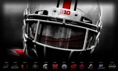 2011 Ohio State Schedule Wall by DraftPick