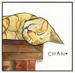Chan by terin814
