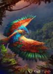 Bird of paradise by Tira-Owl