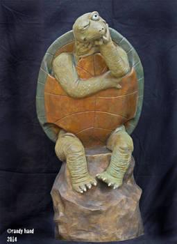 Skeptical Turtle