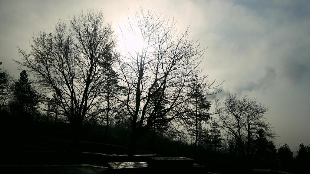 Empty park by alexainen
