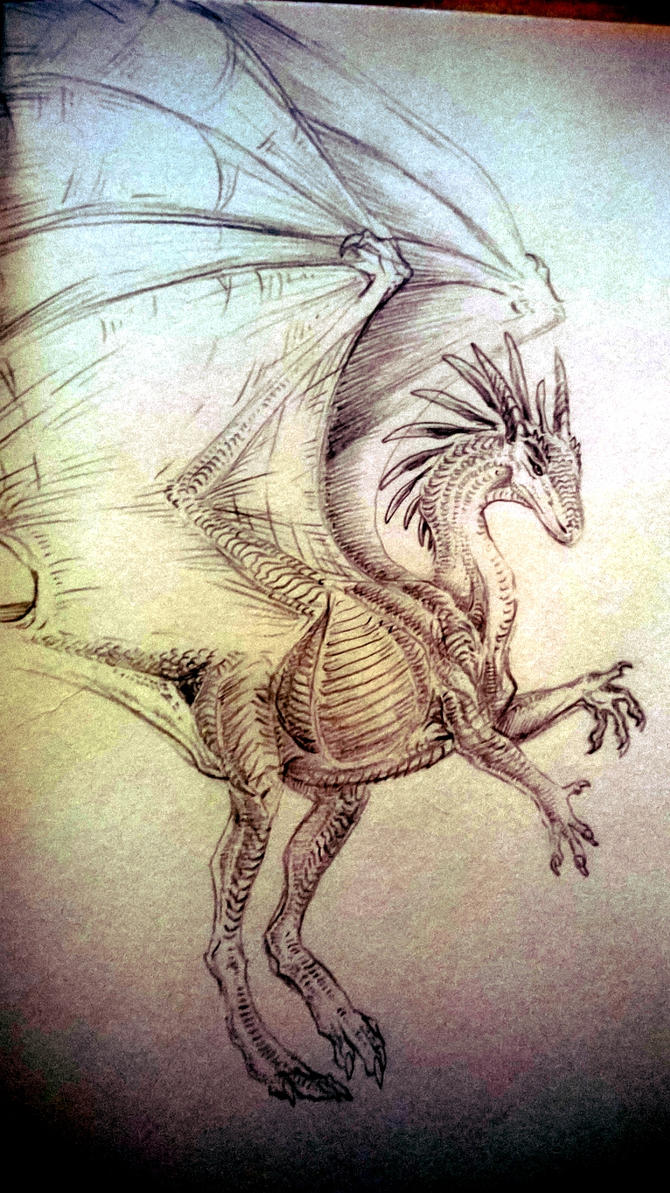 Practice sketch by SilverWolfi