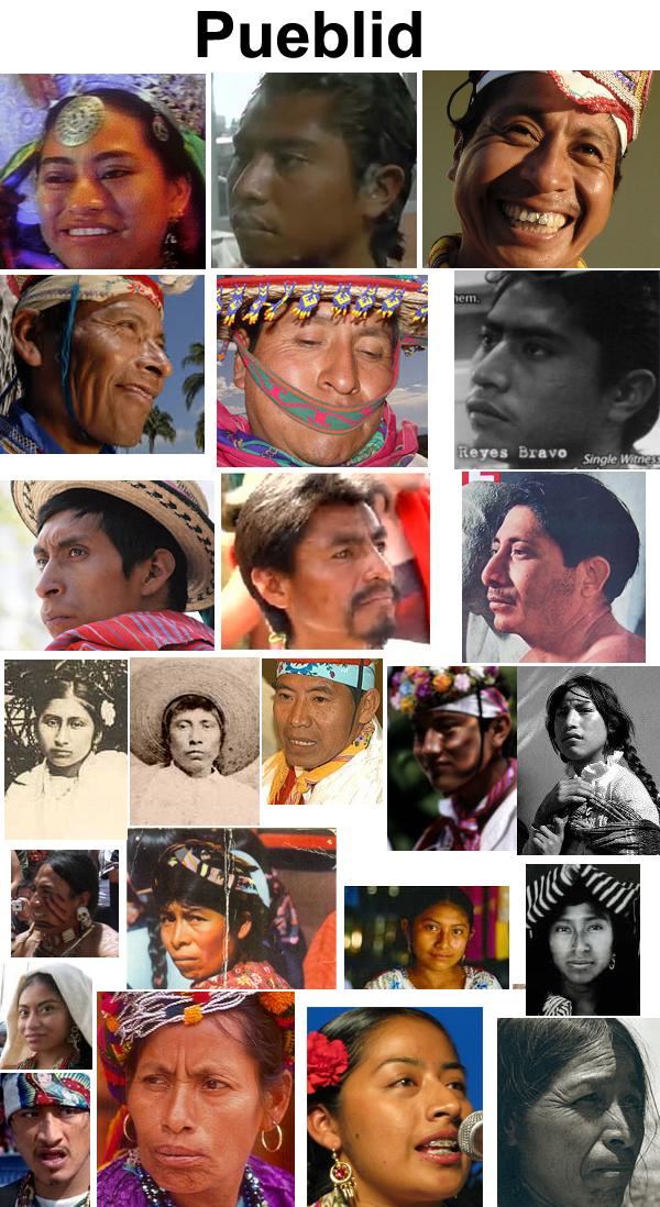 Fenotipos de los amerindios 58f86d1ce546e9d68d88abafb0962858-d4c57qp