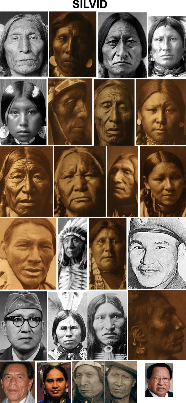 Fenotipos de los amerindios E222dc2213e9a0a4ca4ac13ec265e6e5-d4c8lh0