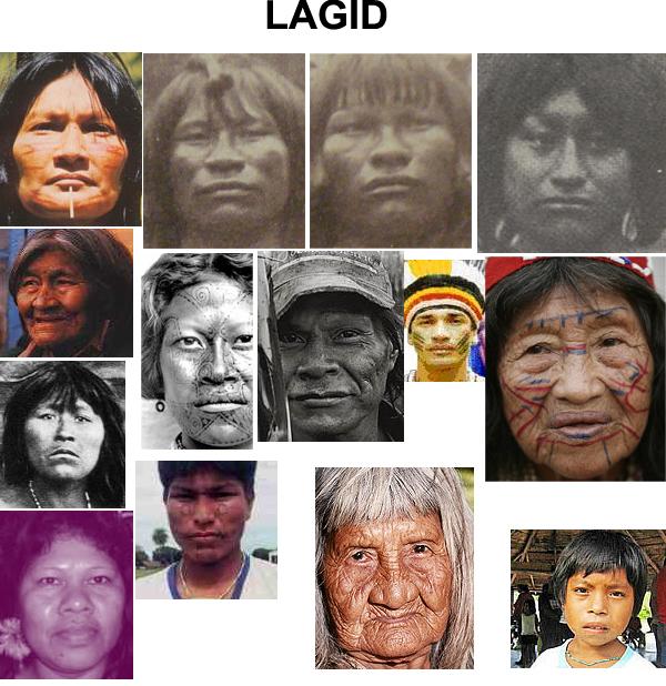 Fenotipos de los amerindios 57d16f6d8883ab6633e21ca706e60cca-d4ccyxw