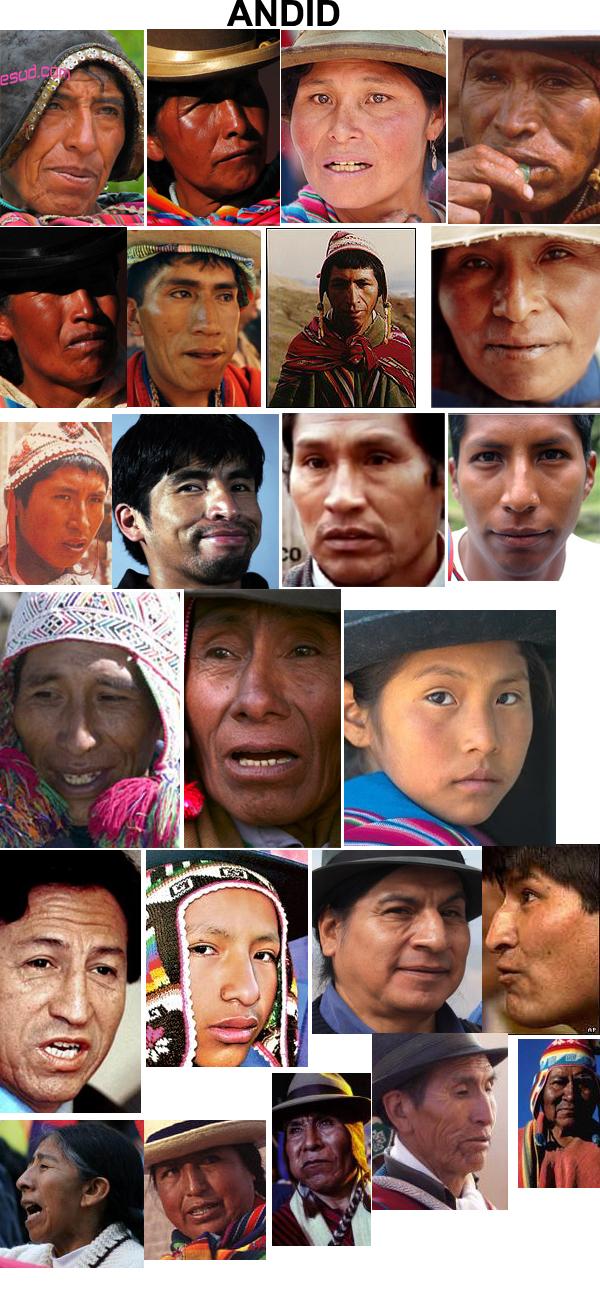 Fenotipos de los amerindios E4a0e493c738649c8a7850f4d4c629a3-d4ccz98