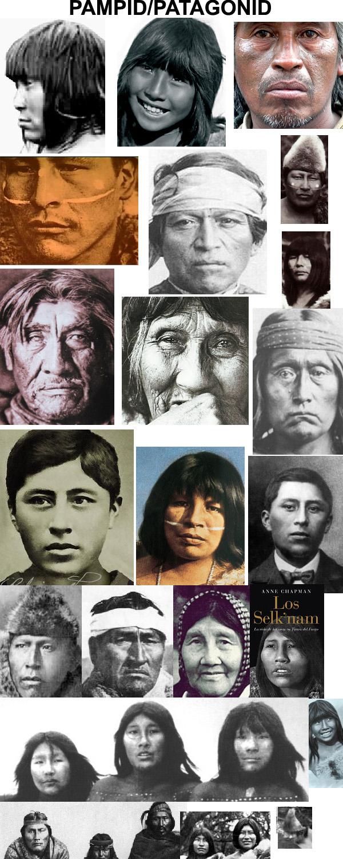 Fenotipos de los amerindios Pampi_by_jhda-d4cd01u