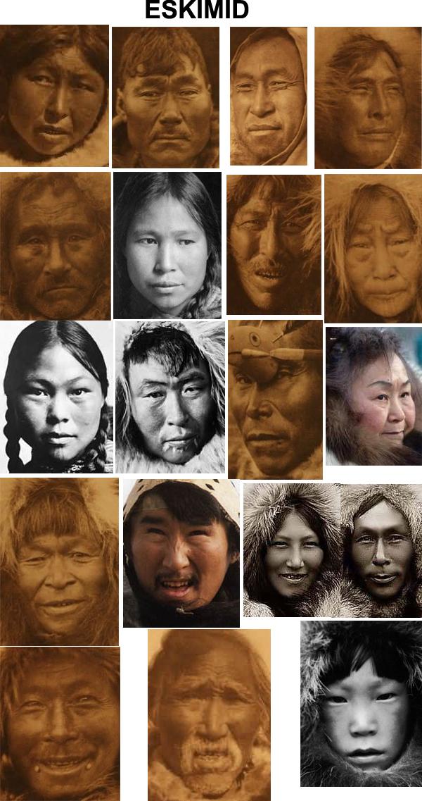 Fenotipos de los amerindios 39257805d0beda491c25f3397e9f8d12-d4ch51u
