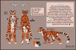 Ref-sheet for Angel Tigress