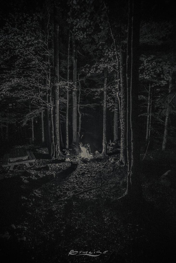 Firelight by Gomeisa-Studio