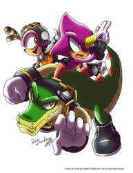 Chaotix Rocks by yuski