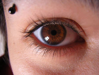 Myrtille's eye - color by bohwaz