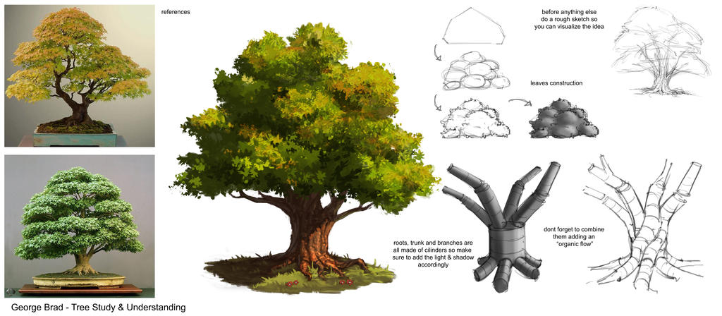 how to draw anime trees