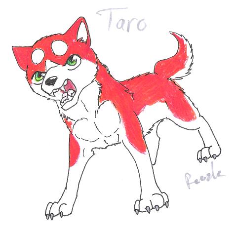 Taro by Noidannuoli