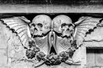 Skulls and Wings Stock Deepgrounduk DeviantArt