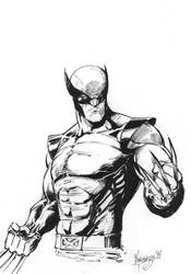 Wolverine by MenguzzOArt