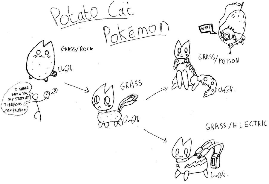 Potato cat pokemon by speedfreak01 on deviantart
