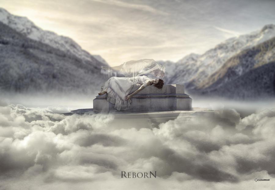 Reborn by ZakHarrar