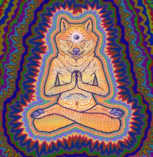 Dharma Doge